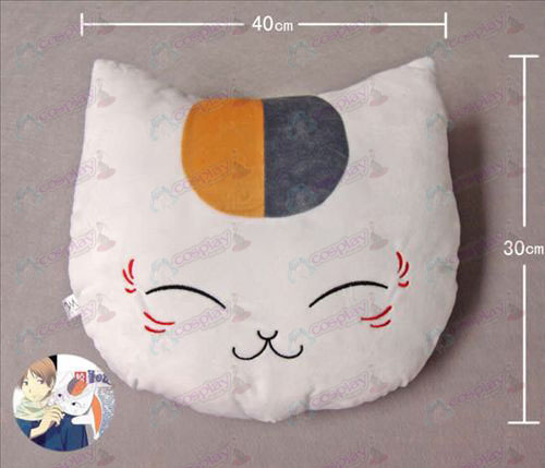 Cat Lehrer Pillow